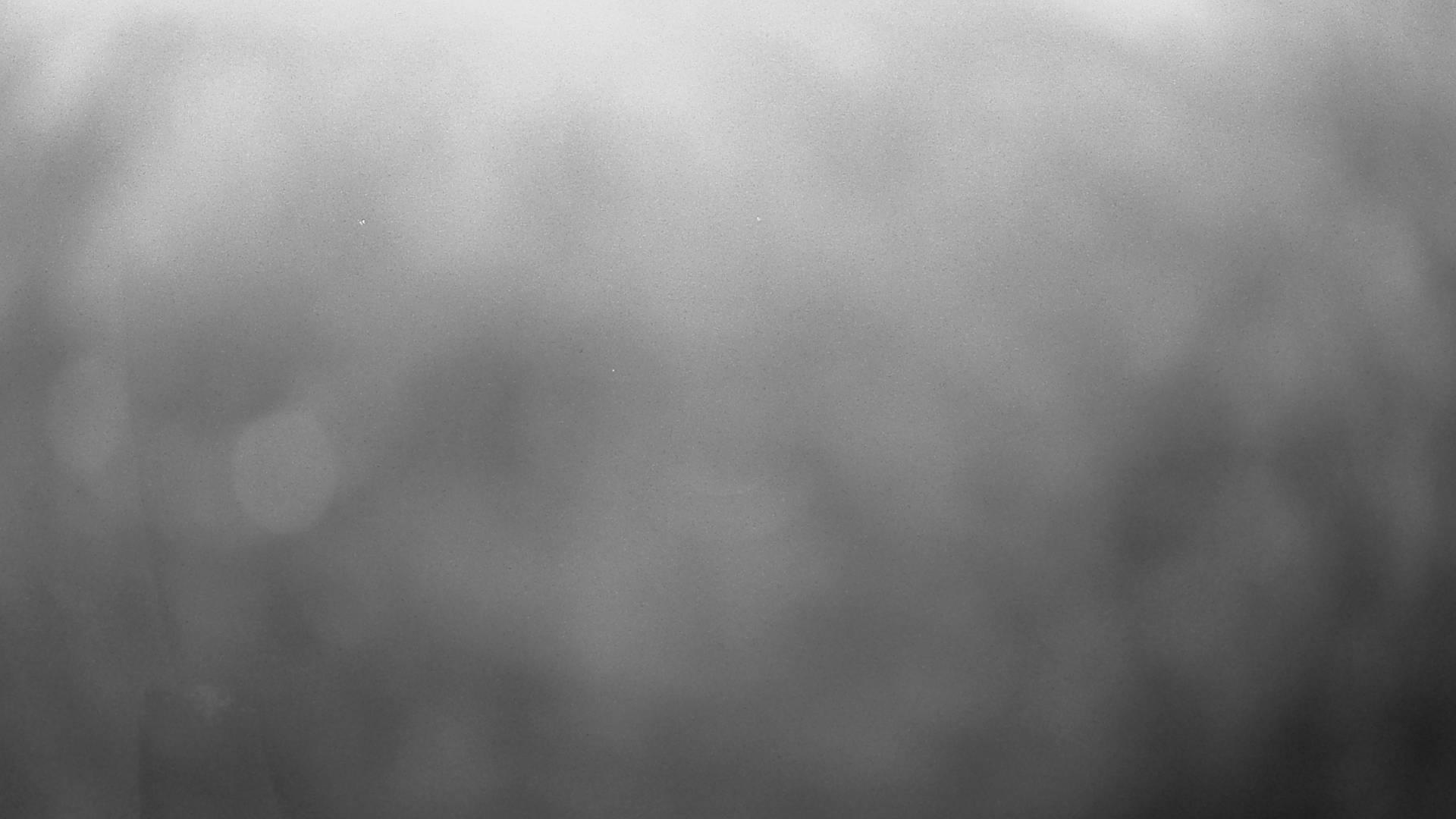 Webcam Letiště Plasy